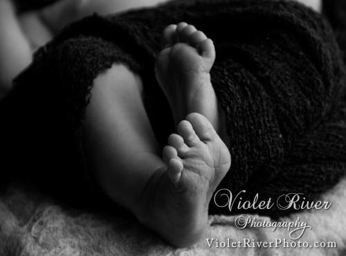 newborn6107-2Newborn_2015