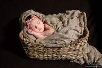 product.Abigail_Rose_Abigail Rose Newborn (13 of 16).Abigail_Rose_Newborn